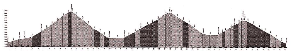 grafico del percorso