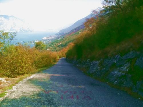 strada e sullo sfondo il Garda